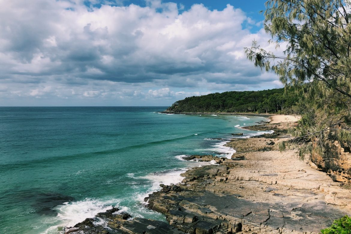 Favo Friday Noosa