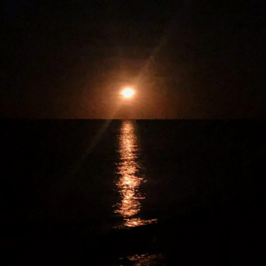 Harvest Moon Exmouth
