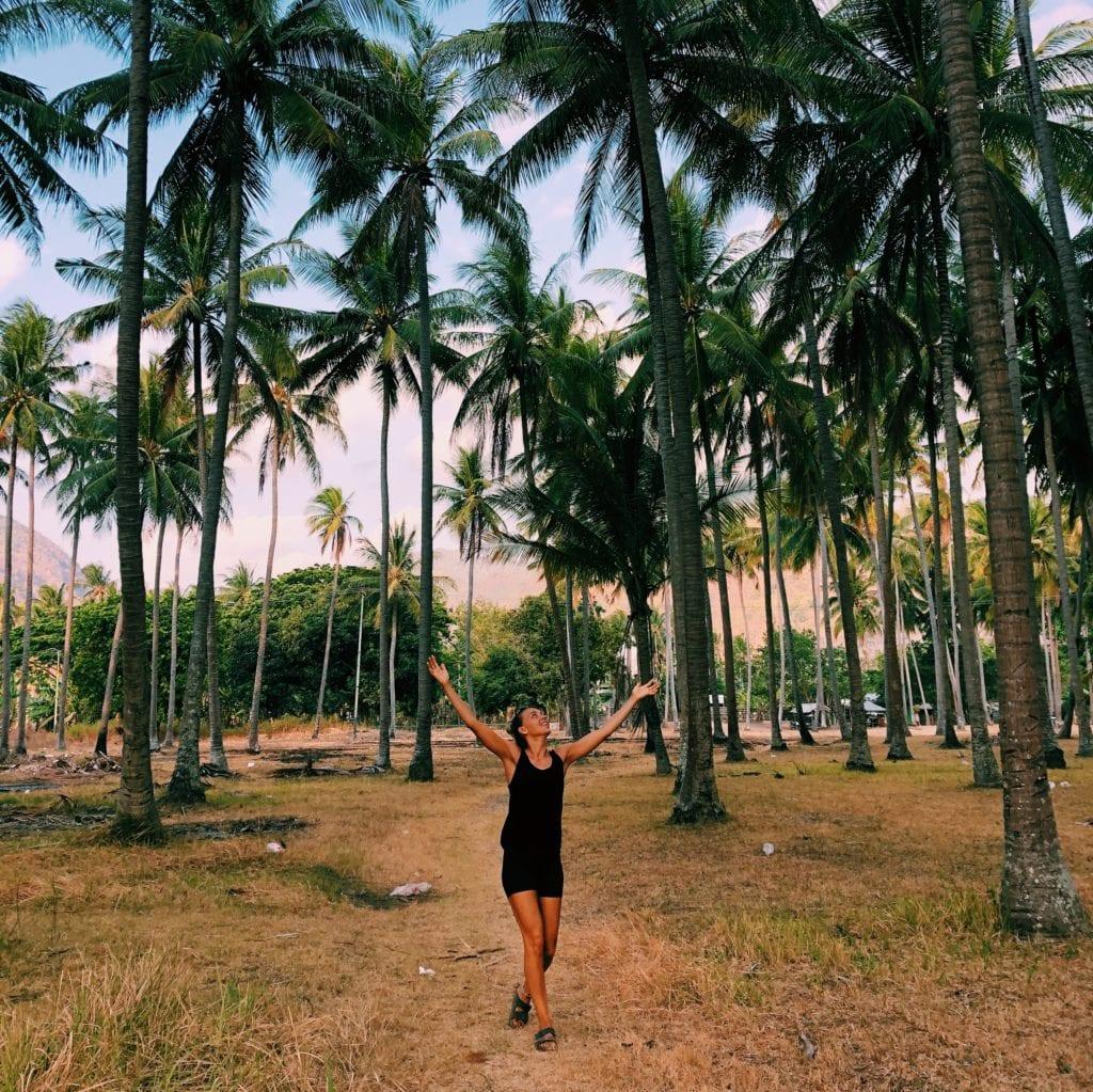 Lombok natuur