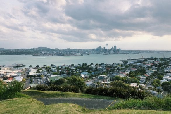 Favo Friday: Auckland